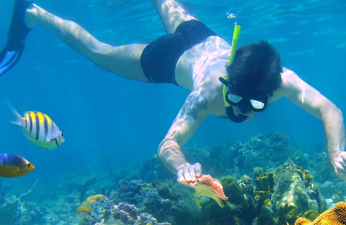 Cozumel Buggy | Cancun City & Tours