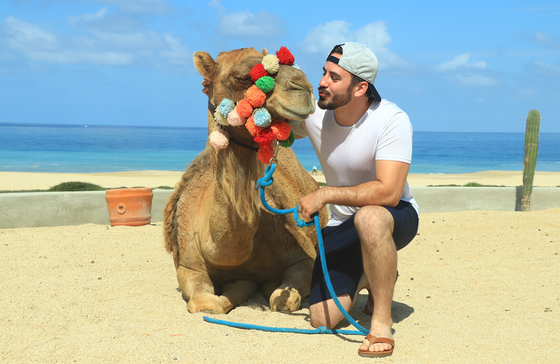 Camel Ride & Ecounter | Altus Tours Cancun