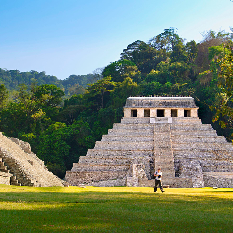 Palenque , Agua Azul Y Misolha from San Cristobal | Altus Tours Cancun