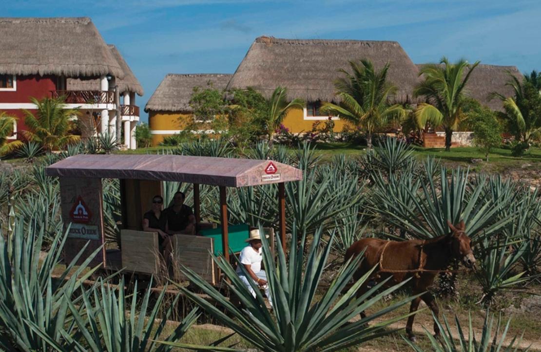 Tour in henequen hacienda Sotuta de Peón | Cancun City & Tours
