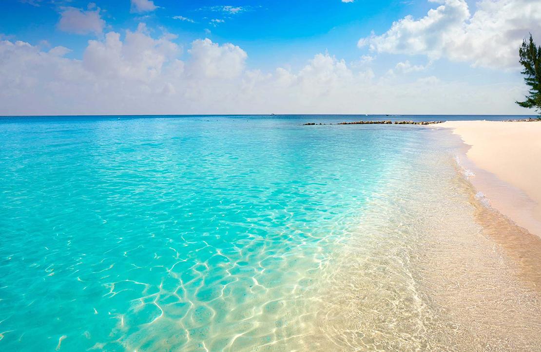 Cozumel | Cancun City & Tours