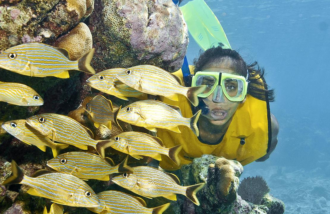 Basic Snorkel Tour    Cancun City & Tours