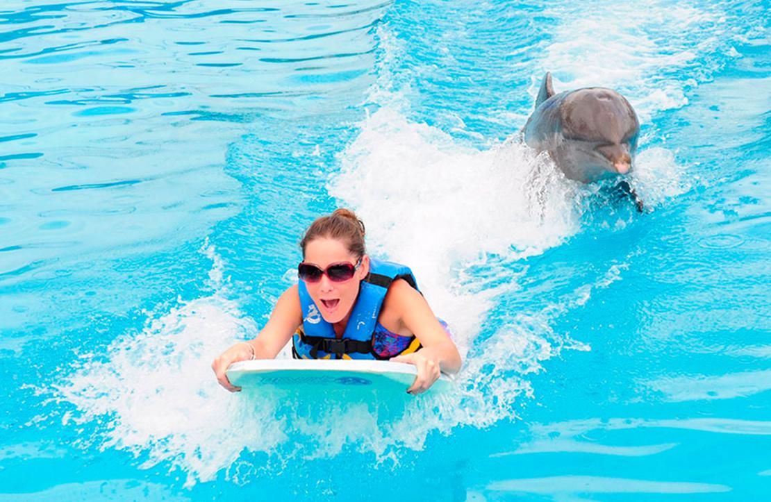 Dolphin Swim Adventure | Cancun City & Tours