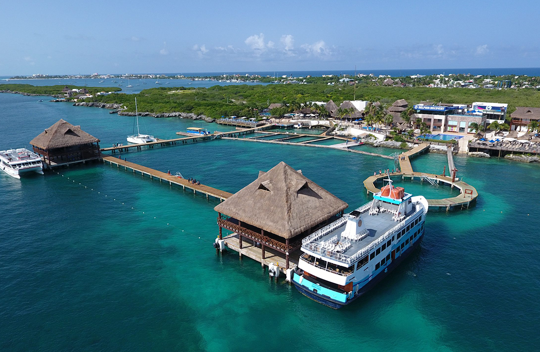 Dolphin Encounter | Cancun City & Tours