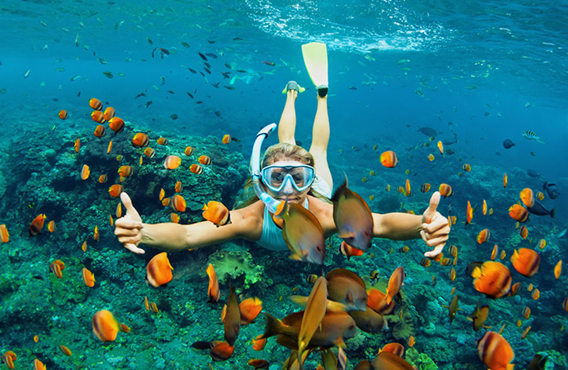 Snorkeling by The Arch Tour | Altus Tours Cancun