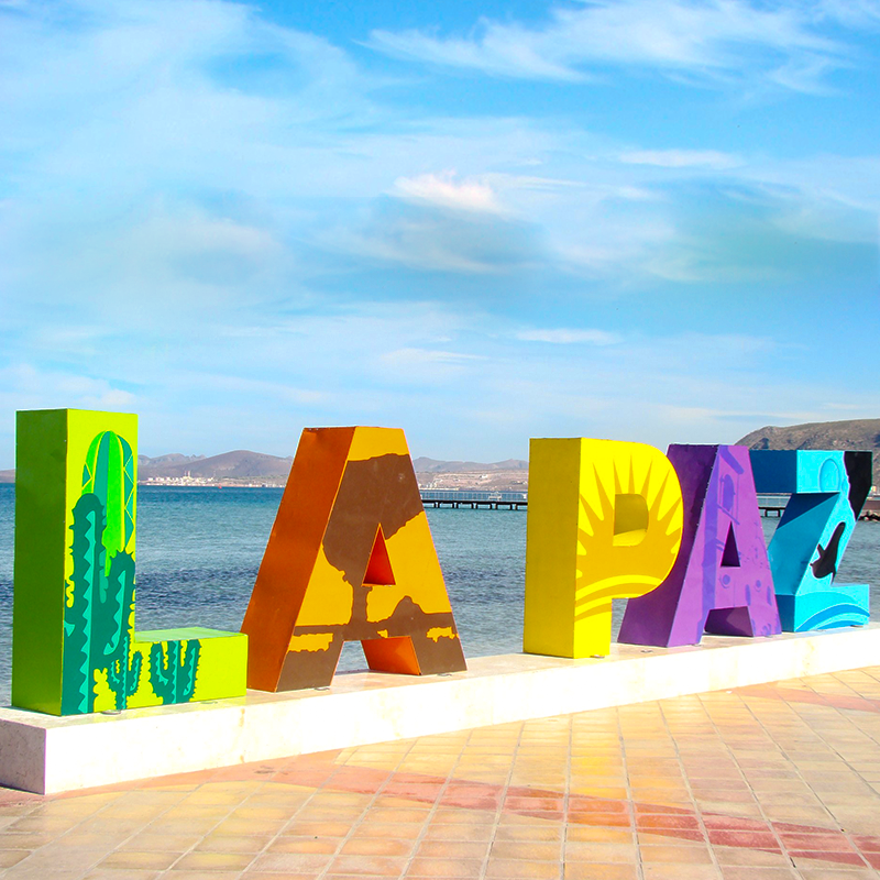 La paz tour | Altus Tours Cancun