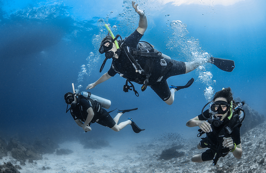 Cozumel Scuba Diving Course  | Cancun City & Tours